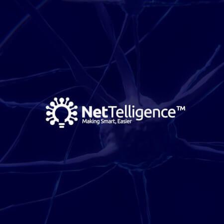 Diseño de Logo: Nettelligence